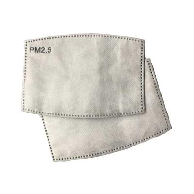Pm 2.5 Filters - Pack of 10 Replacement Filters